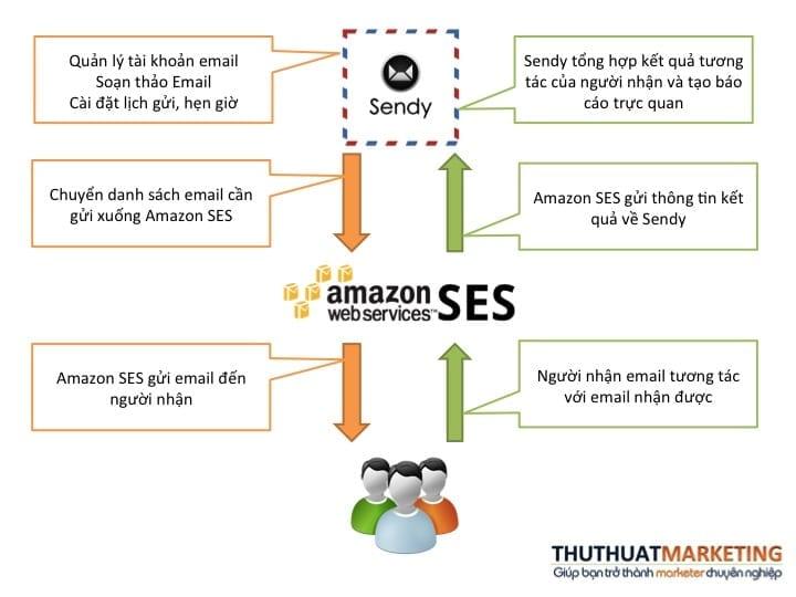 Sendy Amazon